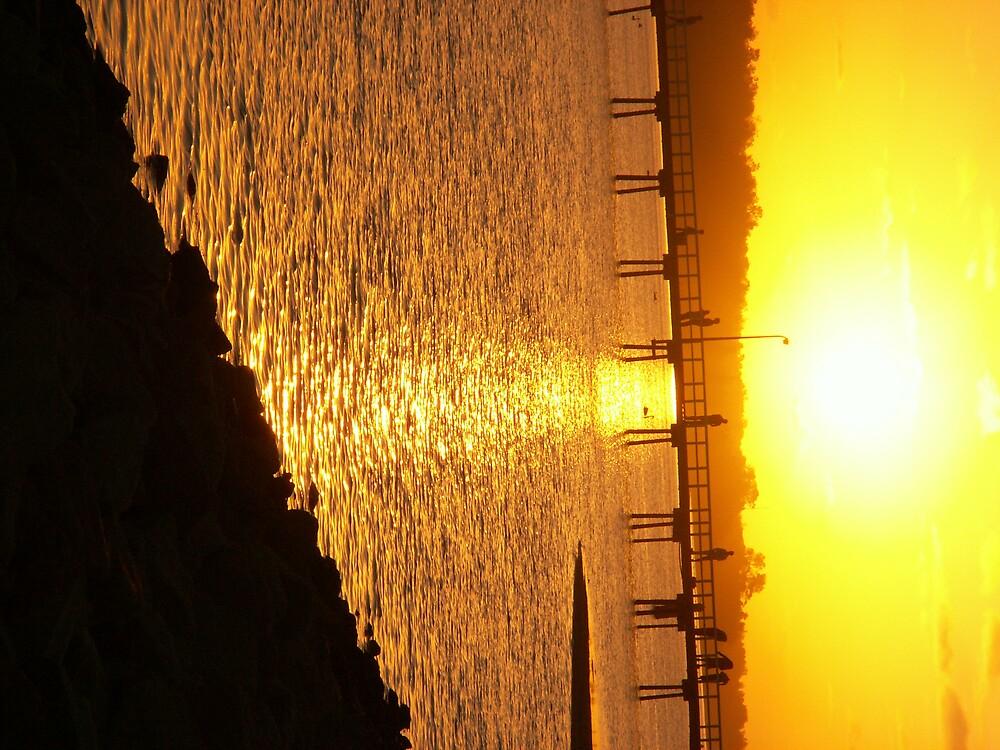 Sun by Jennifer799