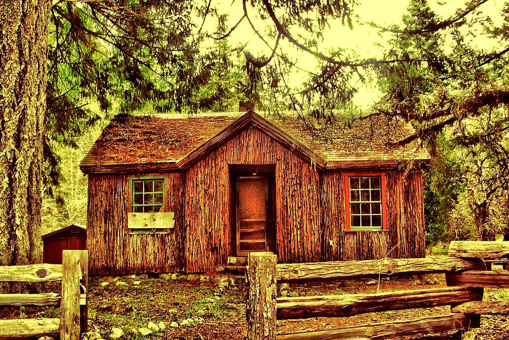 Welcome to Grandma's House by Stephen  Van Tuyl