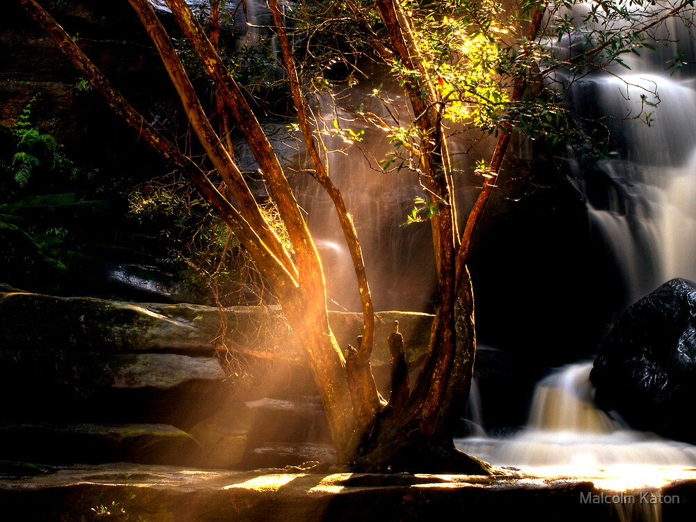 I Can See the Light - Somersby Falls, NSW by Malcolm Katon