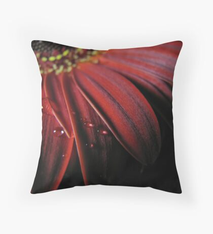 ~ the colour of my love ~ Throw Pillow