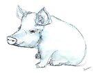 Little Pig by Kendra Shedenhelm