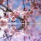 Ich habe einen Traum vom Blüten Meer by Aviana