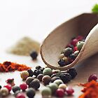 Fresh pepper and spices by Aviana