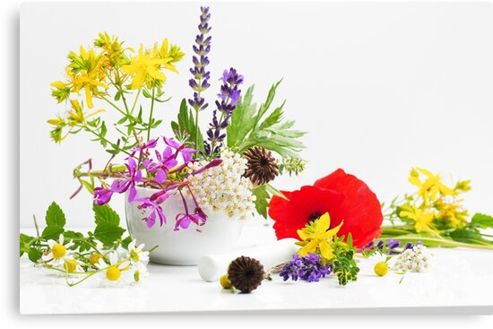 Colorful wild herbs by Aviana