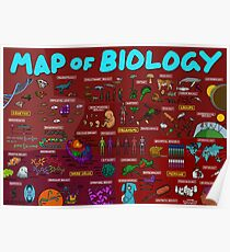 Map of Biology Poster