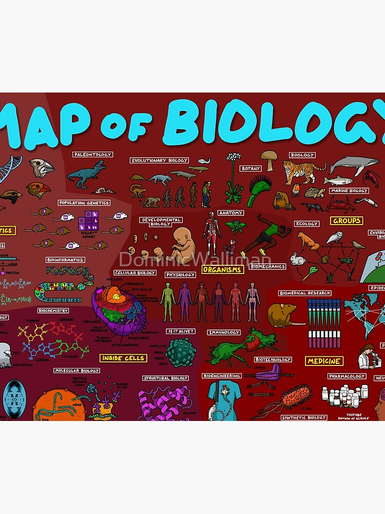 Map of Biology by DominicWalliman
