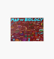 Map of Biology Art Board