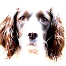 Hello Doggie! by Crystal Nunn