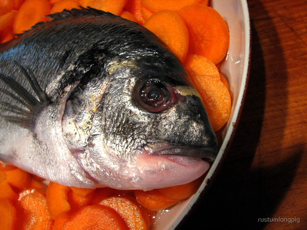 bream in a carroty sea by rustumlongpig