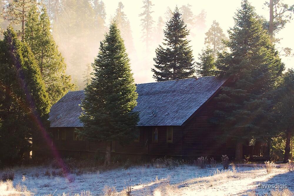 Winters Ice Fog by davesdigis