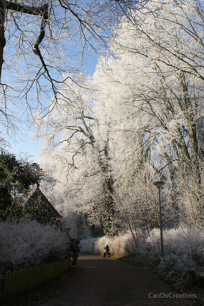 Frost decorated park by CanDuCreations