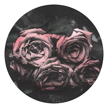Rose 002 by RGDESIGNS93