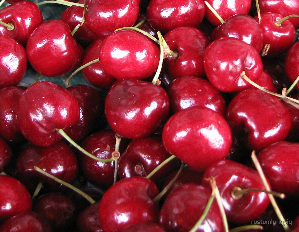 Cherry ripe by rustumlongpig