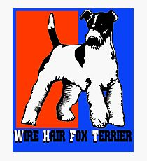 Wire Hair Fox Terrier Photographic Print