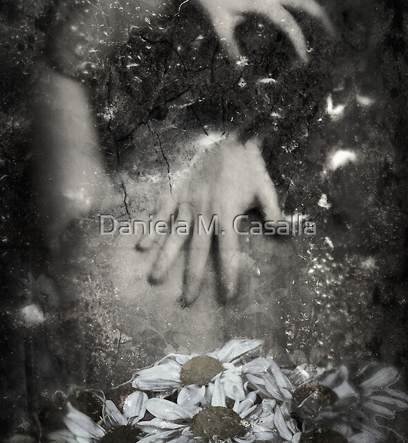 Thoughts by Daniela M. Casalla