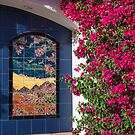 Bountiful Bougainvillea by Tracy Riddell