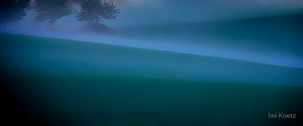 The Ground Fog..........Black Forest by Imi Koetz