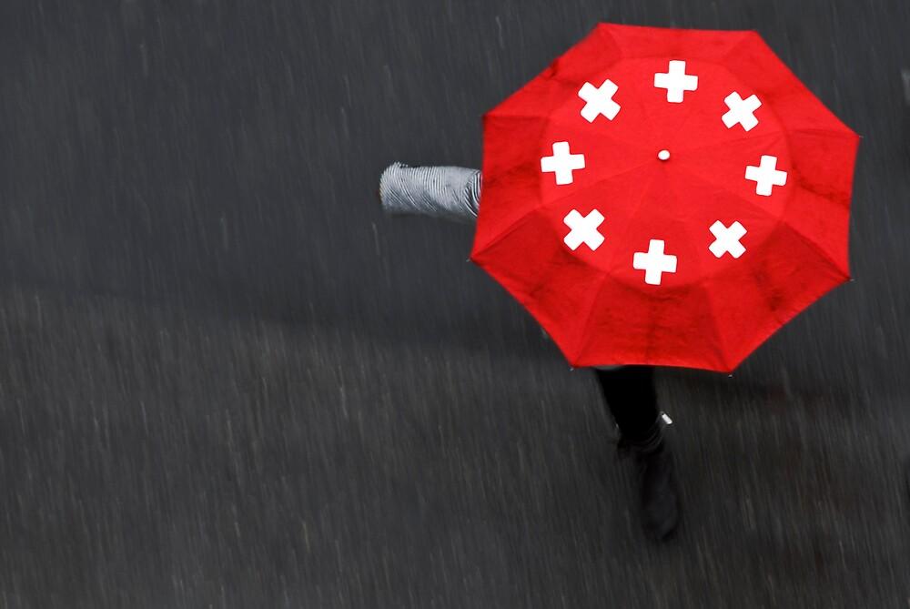 Swiss Rain by edouardv66