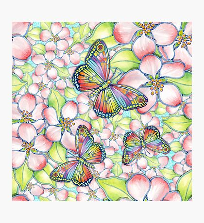 Rainbow Butterfly Blossoms Photographic Print