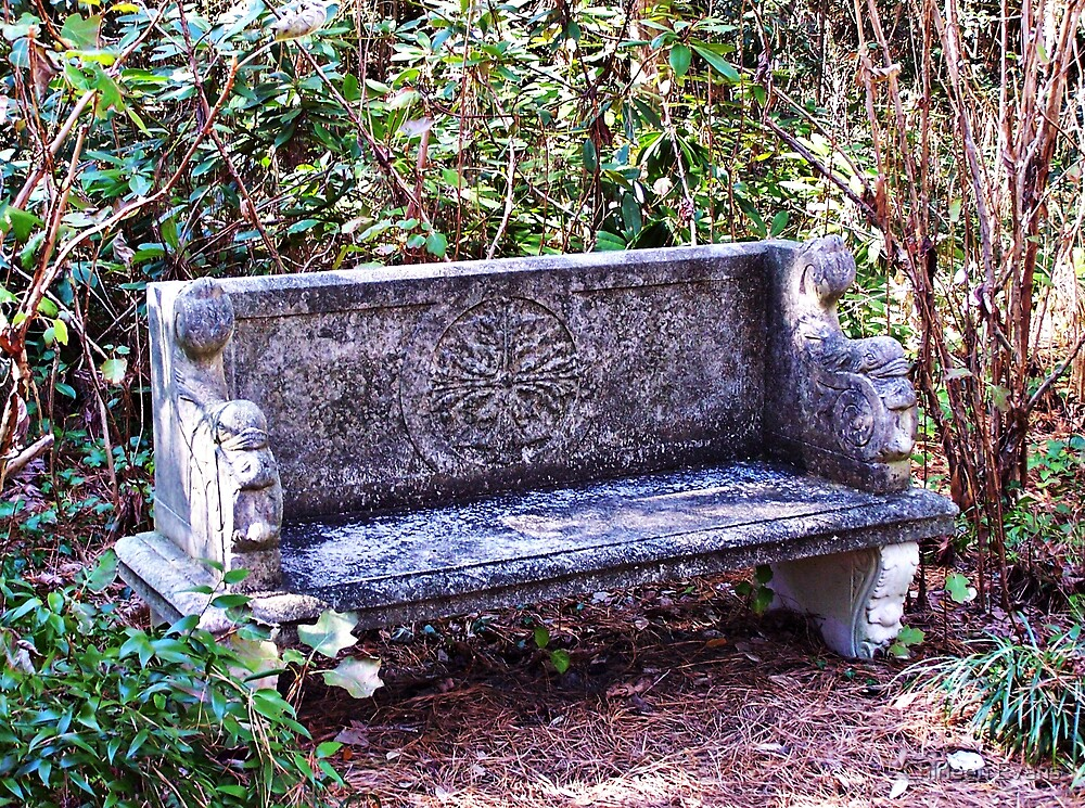 Lonely Bench by Chirleen Evans