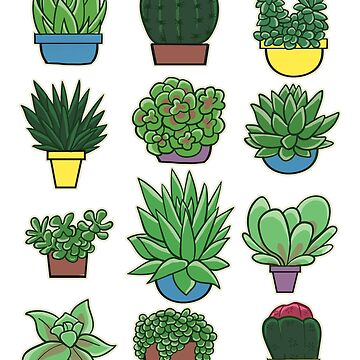 Succulents Cacti Garden Pots by empressofdirt