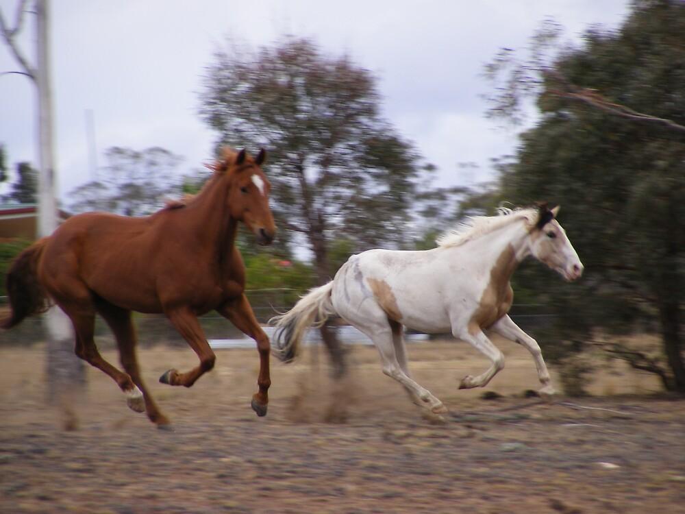 Boys on the run by dustangel