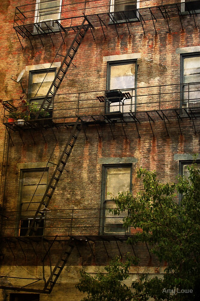 Urban Living by Amy Lowe