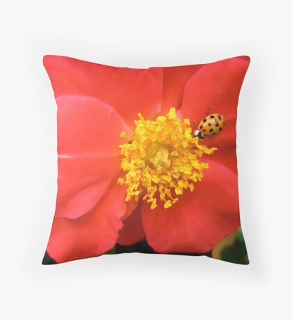 Governor General's Rose 8 - with a visitor Throw Pillow