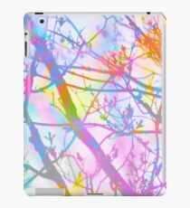 The Mist that Birthed the Rainbow iPad Case/Skin