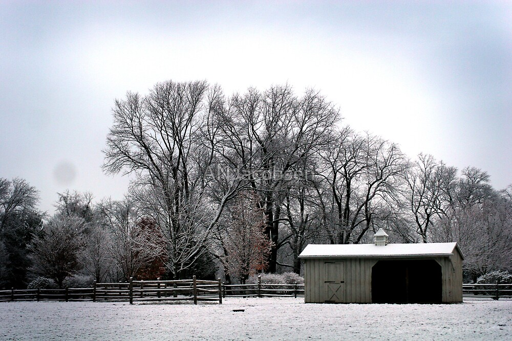 Horse stable by ANJacobsen