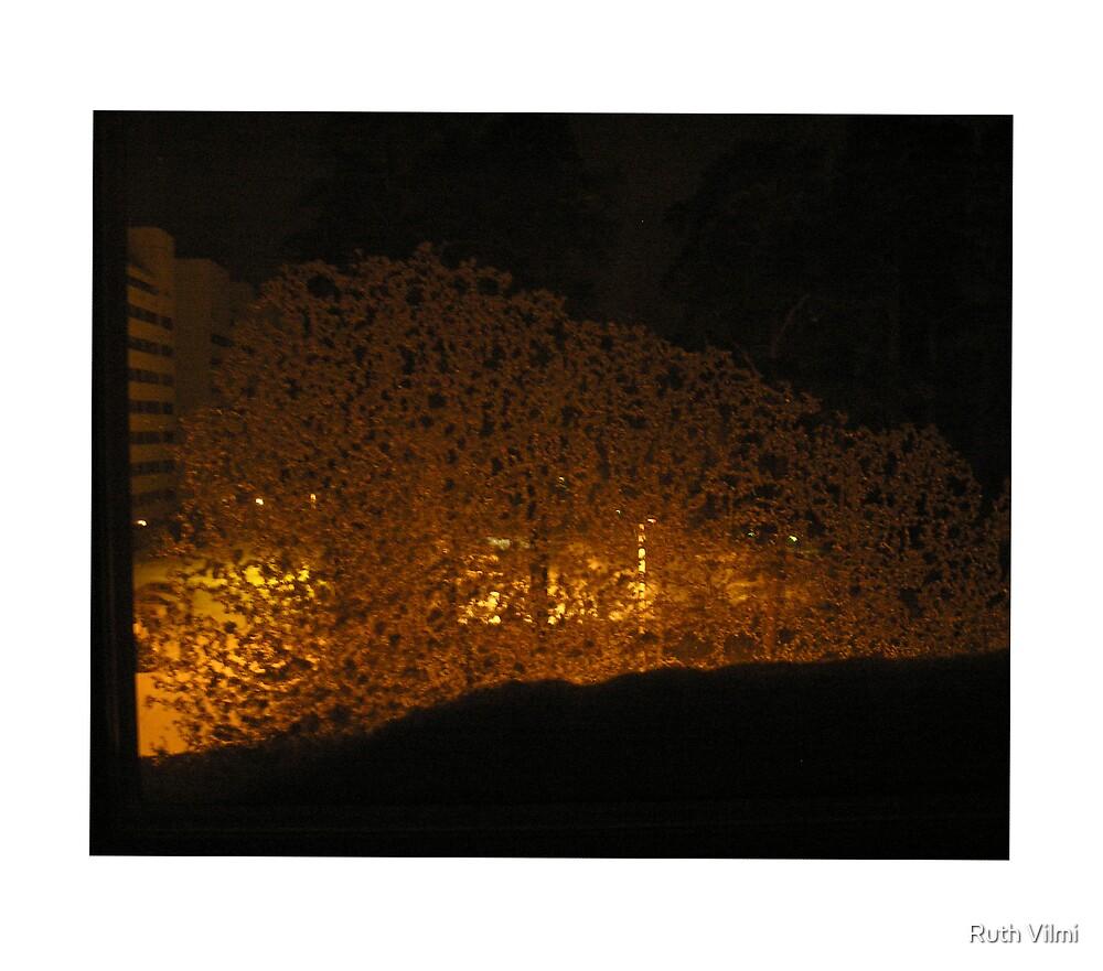 Snowy window by Ruth Vilmi