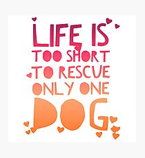Life Is Too Short To Rescue Only One Dog Photographic Print