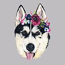 Flower power puppy by Apatche Revealed