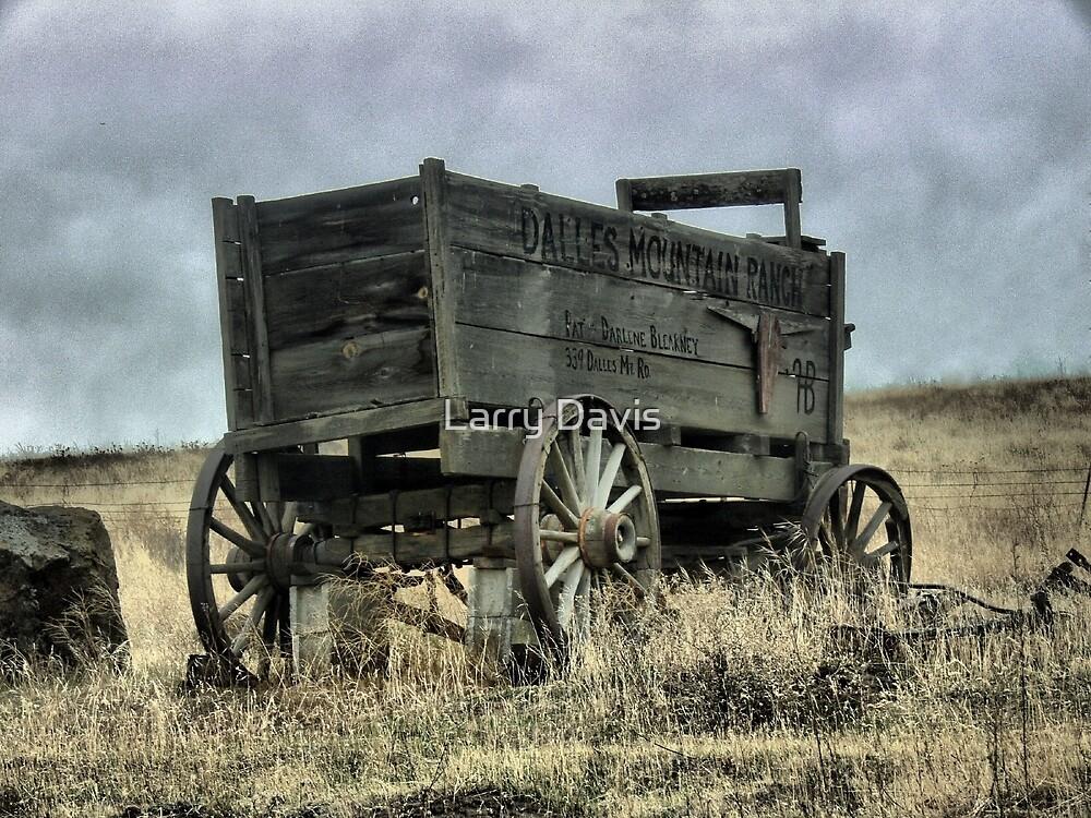 Dalles Mountain Ranch ( 1 ) by Larry Davis