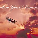 Follow Your Dreams by Carol and Mike Werner