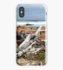 Desolate Shore iPhone Case/Skin
