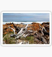 Desolate Shore Sticker