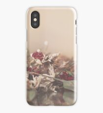 Pastel Garden iPhone Case/Skin