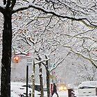 Snow in New York City  by Alberto  DeJesus