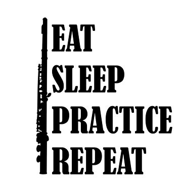Eat Sleep Practice Repeat: Flute by dweebcocreation