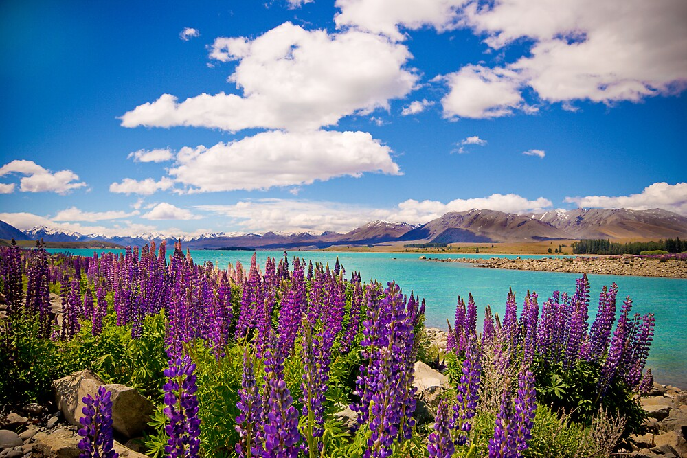 Lake Tekapo by Trishy