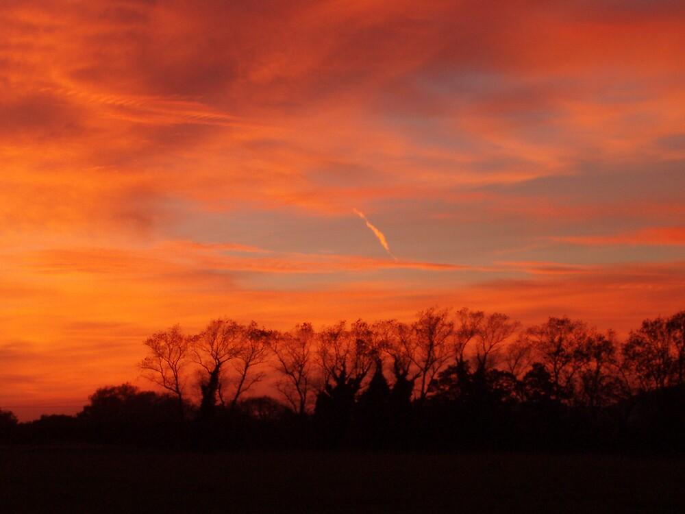 firey sky by Caroline Anderson