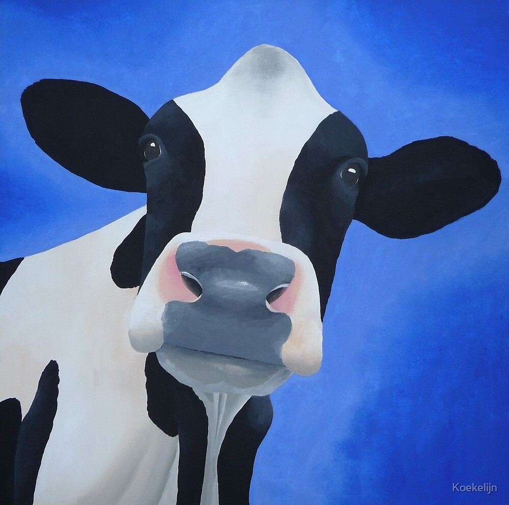 Cow blue by Koekelijn