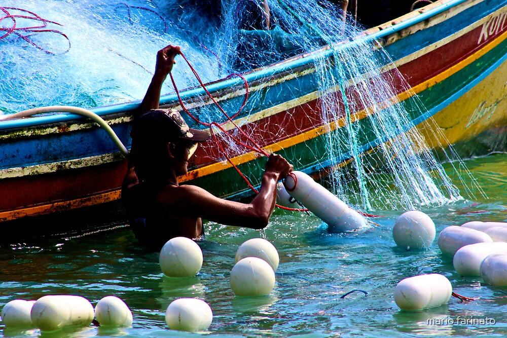 sun  and water by mario farinato
