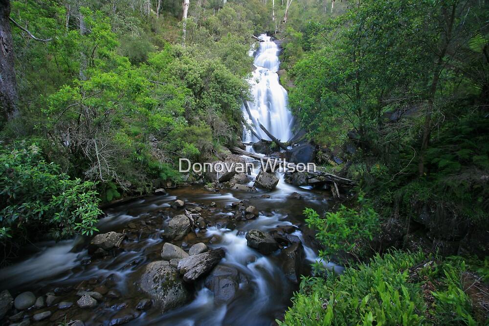 Snobs creek falls by Donovan Wilson