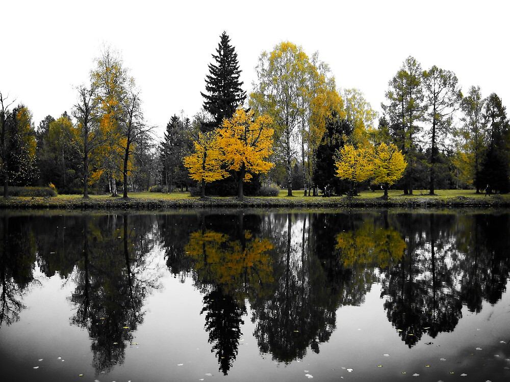 Mirrored - Pavlovsk, Russia by Boxx