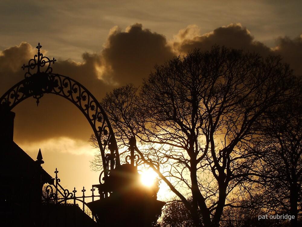 Morning Light by pat oubridge