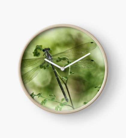 A tiny one hidden in the green by the pond Clock