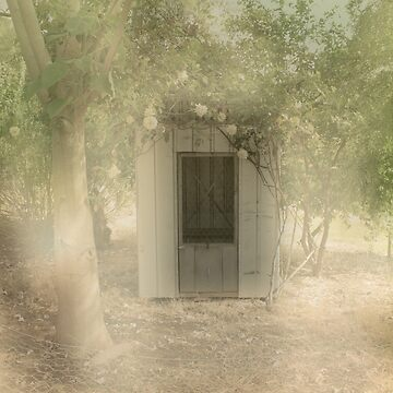 The Old Chook Shed by decoaddict