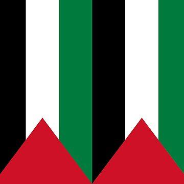 Palestine by DJVYEATES